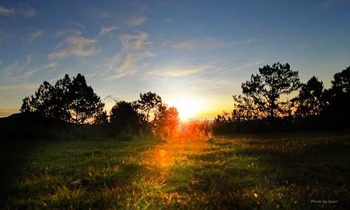 Vườn quốc gia Bidoup Núi Bà điểm đến mới mẻ dành cho giới trẻ - anh 8