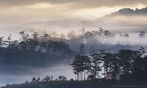 Vườn quốc gia Bidoup Núi Bà điểm đến mới mẻ dành cho giới trẻ - anh 9