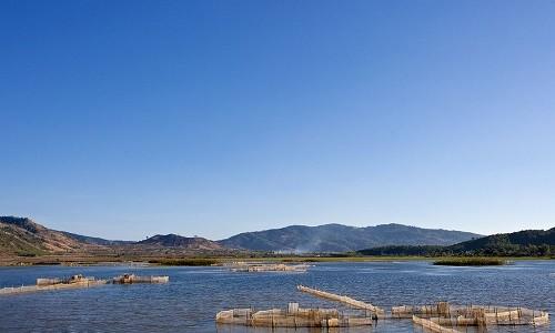 Chiêm ngưỡng vẻ đẹp hồ T'nưng - hồ nước ngọt lớn nhất Tây Nguyên - anh 7