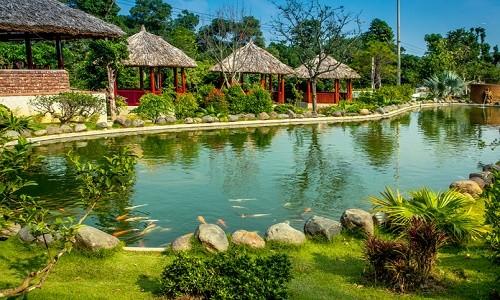 Vườn sinh thái Ngọc Linh - điểm đến mới mẻ ở ngoại ô Hà Nội - anh 4