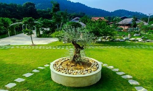 Vườn sinh thái Ngọc Linh - điểm đến mới mẻ ở ngoại ô Hà Nội - anh 9