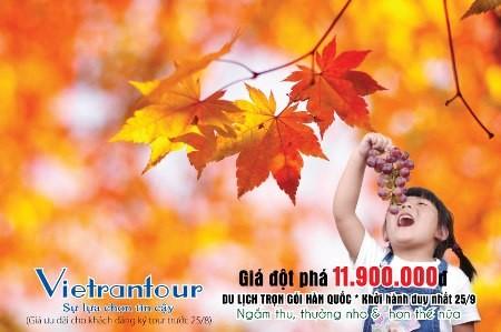 Khám phá mùa thu đẹp như tranh vẽ tại xứ sở Kim Chi - anh 1