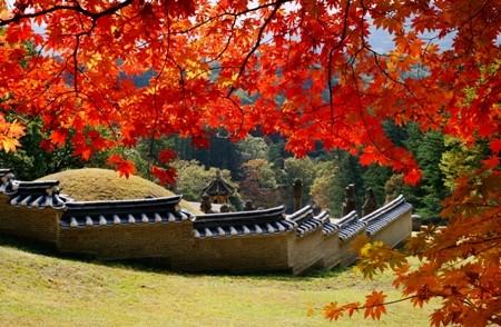 Khám phá mùa thu đẹp như tranh vẽ tại xứ sở Kim Chi - anh 2