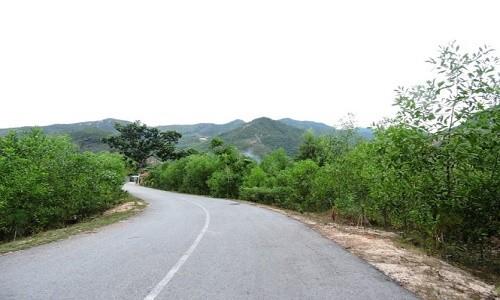 Khu du lịch sinh thái Duy Sơn - điểm đến hoang sơ đầy bí ẩn - anh 2