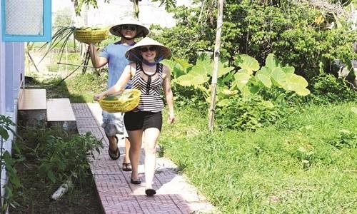 Điểm danh những làng rau nổi tiếng dọc miền đất nước - anh 2
