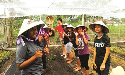 Điểm danh những làng rau nổi tiếng dọc miền đất nước - anh 3
