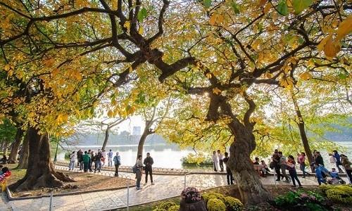 Những điểm đến đẹp đến say lòng ở Việt Nam vào mùa thu - anh 2