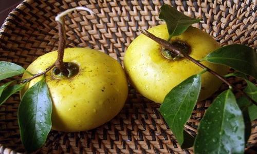 Thu về gợi nhớ những món ăn mang đậm hương vị Hà Thành xưa - anh 3