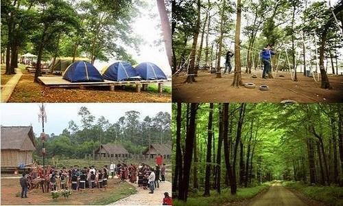 Khu du lịch sinh thái Đồng Mô - điểm đến lý tưởng cho sinh viên vào cuối tuần - anh 2