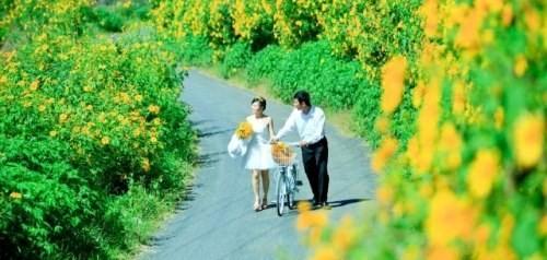 Điểm danh những con đường hoa đẹp ngây ngất ở Việt Nam - anh 9