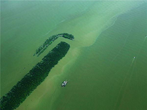 """""""Nghẹt thở"""" với chùm ảnh tuyệt đẹp của Hạ Long chụp từ thuỷ phi cơ - anh 3"""