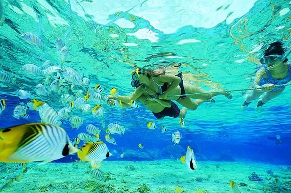 Cẩm nang cho chuyến khám phá thiên đường biển cả Perhentian - Malaysia - anh 3