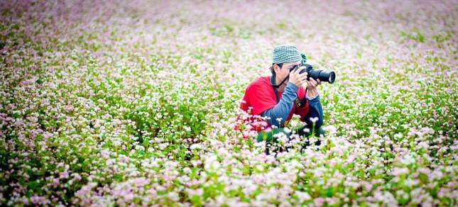 Đẹp ngỡ ngàng mùa tam giác mạch ở Hà Giang - anh 4