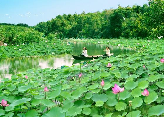 Cẩm nang cho chuyến du lịch khám phá mảnh đất Đồng Tháp - anh 1