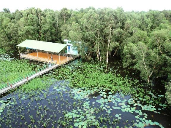 Cẩm nang cho chuyến du lịch khám phá mảnh đất Đồng Tháp - anh 3