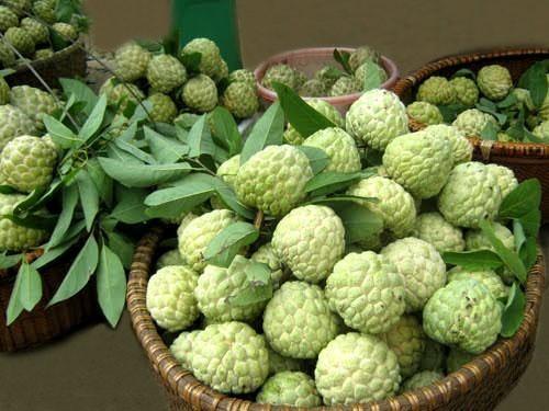 Say lòng với những món đặc sản tuyệt ngon của mảnh đất Lạng Sơn - anh 2
