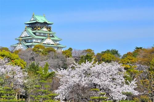 Vịnh Hạ Long lọt top 8 không gian xanh tốt nhất châu Á - anh 4