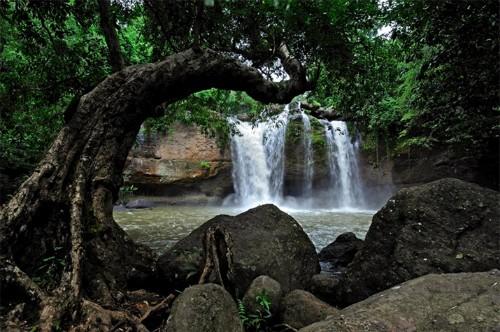 Vịnh Hạ Long lọt top 8 không gian xanh tốt nhất châu Á - anh 7