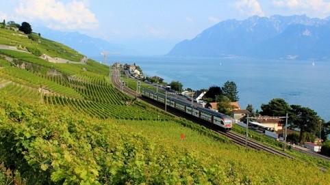 Mê mẩn trước vẻ đẹp tuyệt vời của đồi nho Lavaux - Thụy Sỹ - anh 1