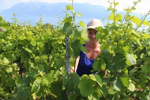 Mê mẩn trước vẻ đẹp tuyệt vời của đồi nho Lavaux - Thụy Sỹ - anh 2