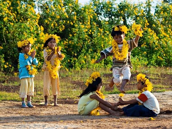 Mê mẩn với sắc vàng rực của hoa dã quỳ đầu đông ở Đà Lạt - anh 12