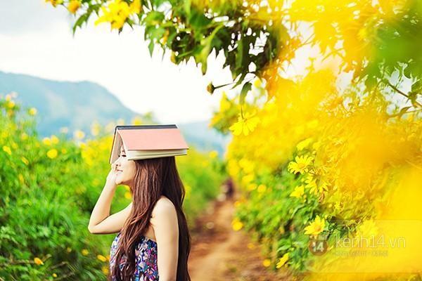 Mê mẩn với sắc vàng rực của hoa dã quỳ đầu đông ở Đà Lạt - anh 6