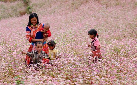 Việt Nam lọt top 20 quốc gia đáng sống nhất thế giới - anh 1