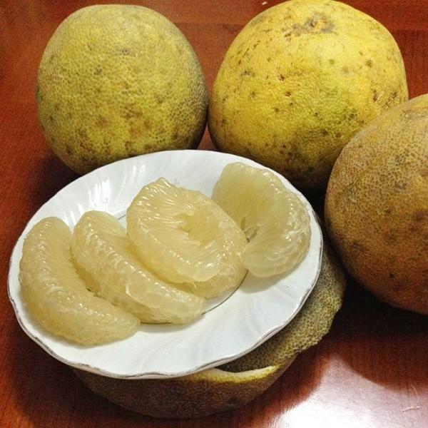 Những món ăn ngon đặc sắc của đất tổ Phú Thọ - anh 7