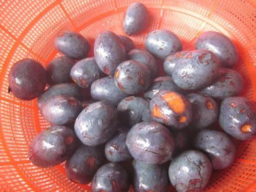 Những món ăn ngon đặc sắc của đất tổ Phú Thọ - anh 2