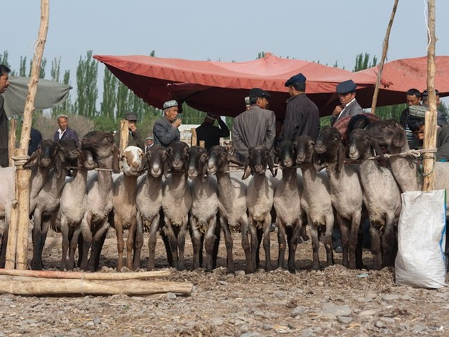 Chợ Long Biên lọt top những khu chợ trời hấp dẫn nhất thế giới - anh 5