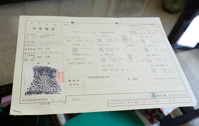 Lý giải nguyên nhân thịt bò Kobe có giá ngàn đô - anh 7