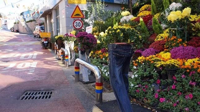 Ngỡ ngàng ngắm ngôi làng đậm chất nghệ thuật ở Hàn Quốc - anh 9