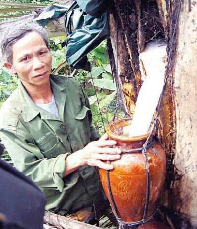 Những món ăn ngon khó cưỡng của mảnh đất Đắk Lắk - anh 8