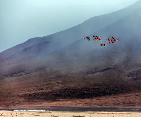 Ngỡ ngàng trước vẻ đẹp cuốn hút của hồ nước đỏ kỳ lạ nhất thế giới - anh 11