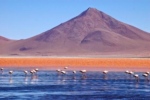 Ngỡ ngàng trước vẻ đẹp cuốn hút của hồ nước đỏ kỳ lạ nhất thế giới - anh 6
