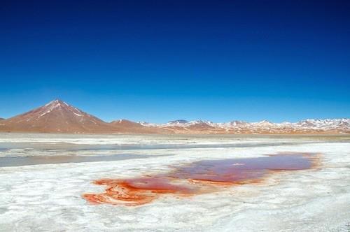 Ngỡ ngàng trước vẻ đẹp cuốn hút của hồ nước đỏ kỳ lạ nhất thế giới - anh 7