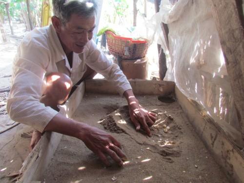 Chuyện lập nghiệp của lão nông miền Tây kiếm tiền tỷ nhờ nuôi cá nước ngọt ở cửa biển - anh 2
