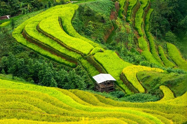 Những lý do Việt Nam trở thành điểm đến hút hồn mọi du khách - anh 1