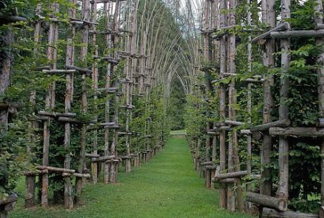 Ngất ngây với nhà thờ tuyệt đẹp bằng ...cây xanh ở Ý - anh 2