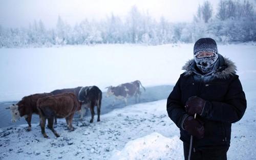 Khám phá cuộc sống phi thường ở ngôi làng lạnh nhất thế giới - anh 11
