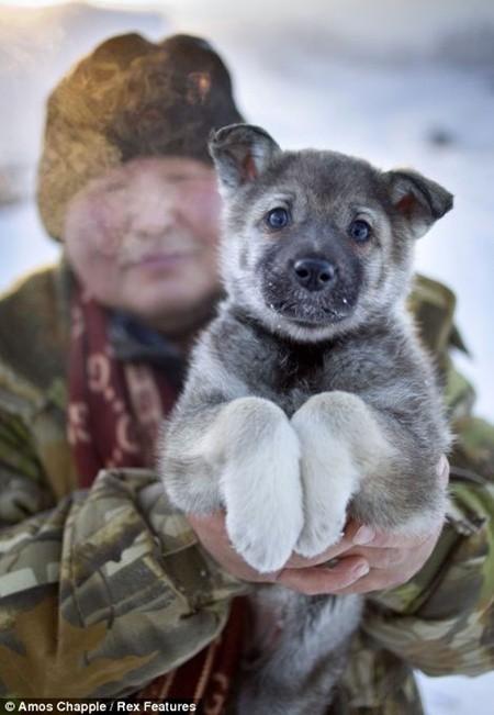 Khám phá cuộc sống phi thường ở ngôi làng lạnh nhất thế giới - anh 15