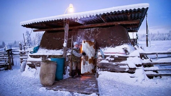 Khám phá cuộc sống phi thường ở ngôi làng lạnh nhất thế giới - anh 6