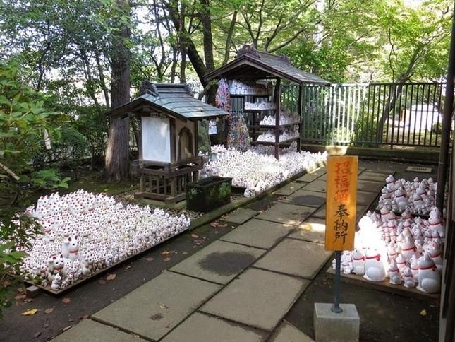 Khám phá ngôi đền của những chú mèo vẫy tay may mắn ở Nhật - anh 3