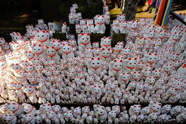 Khám phá ngôi đền của những chú mèo vẫy tay may mắn ở Nhật - anh 5