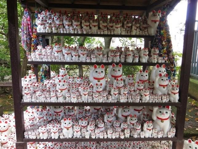 Khám phá ngôi đền của những chú mèo vẫy tay may mắn ở Nhật - anh 6