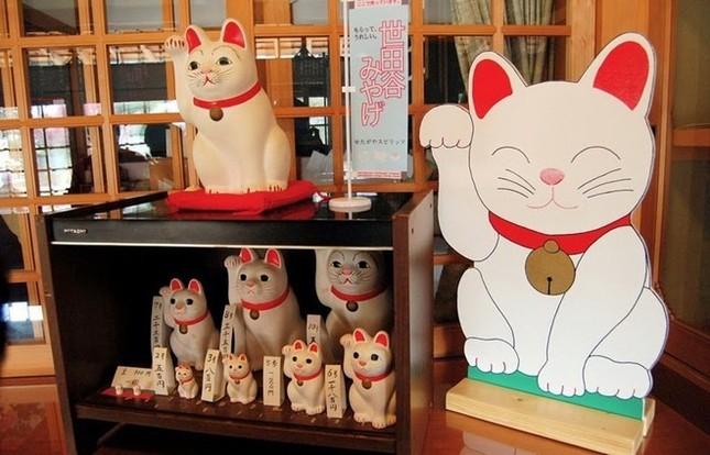 Khám phá ngôi đền của những chú mèo vẫy tay may mắn ở Nhật - anh 8