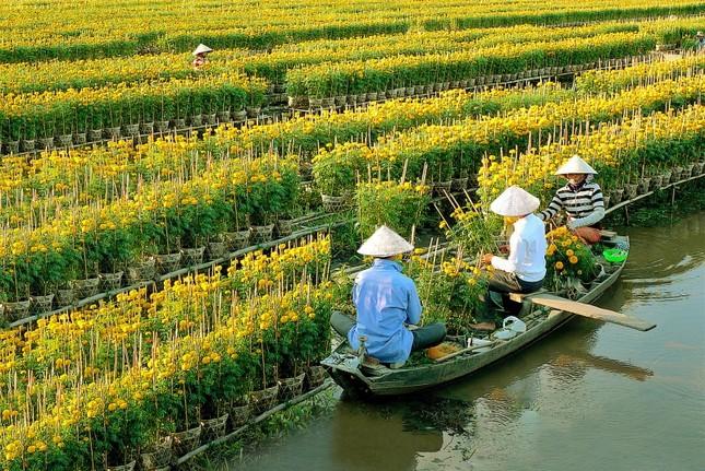 Những địa điểm du lịch Tết không thể bỏ qua ở miền Nam - anh 7