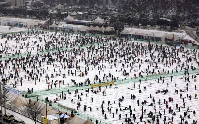 Độc đáo lễ hội câu cá bằng miệng trên băng ở Hàn Quốc - anh 1