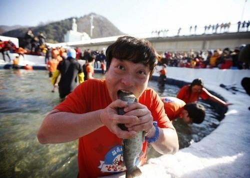Độc đáo lễ hội câu cá bằng miệng trên băng ở Hàn Quốc - anh 6