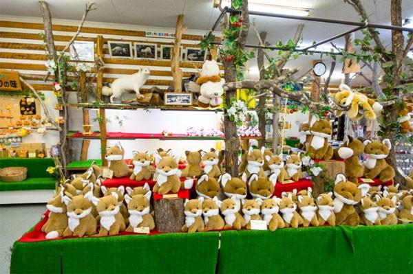 Khám phá ngôi làng của những chú cáo đáng yêu ở Nhật Bản - anh 9